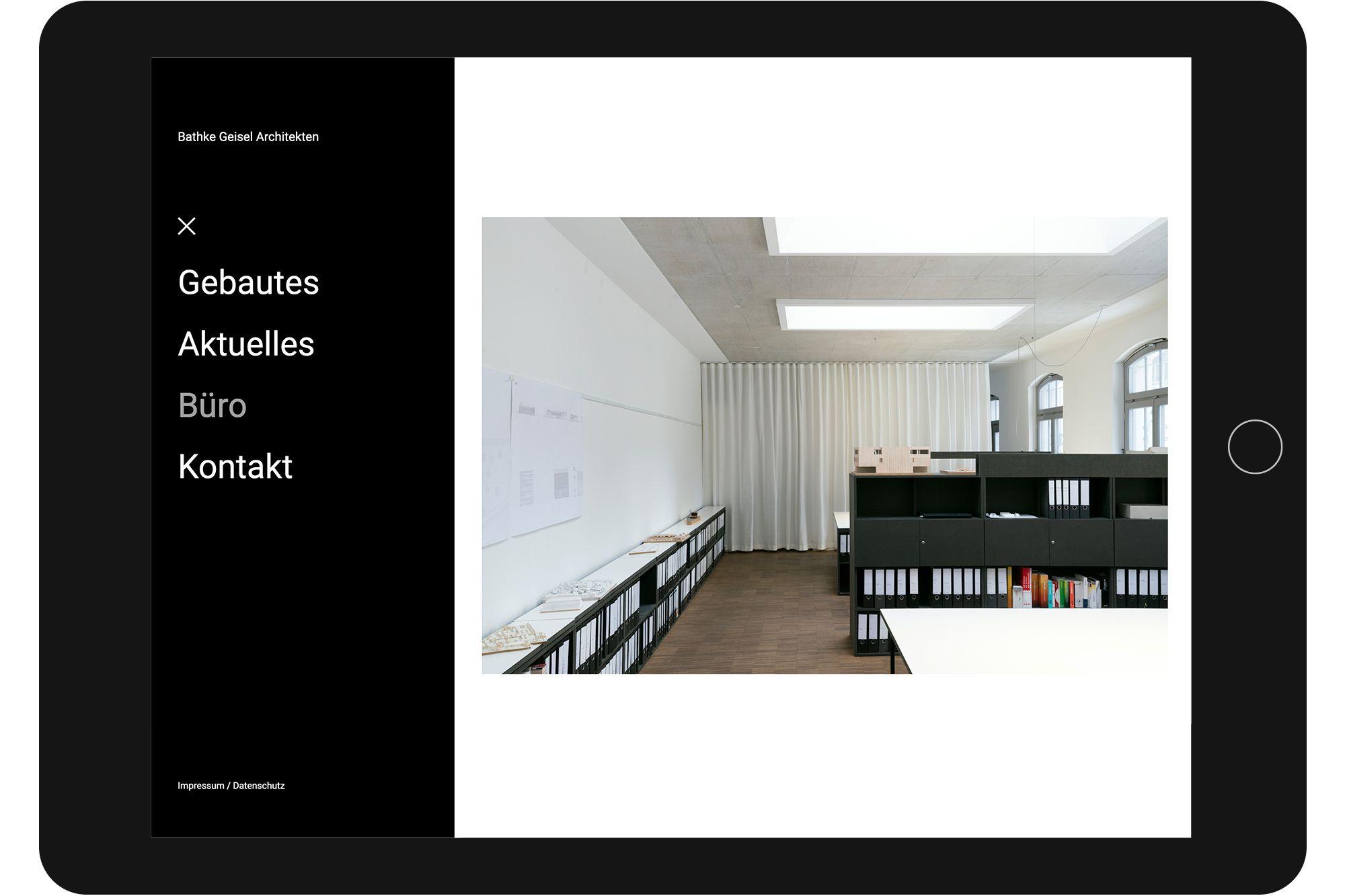 Bathke Geisel Website Dummies 02
